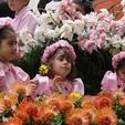 madeira-flower-festival-fot-madeira-islands-tourism.jpg